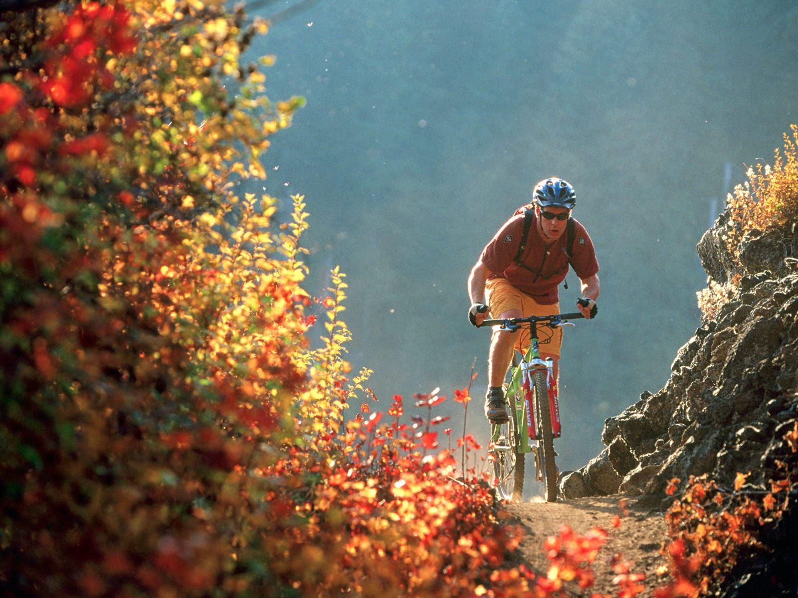 Hotel Philibert-solo-biker